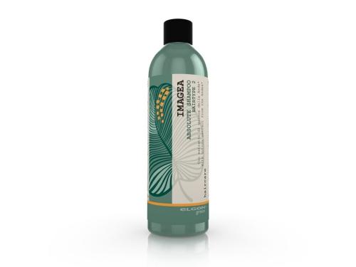 Absolute Shampoo